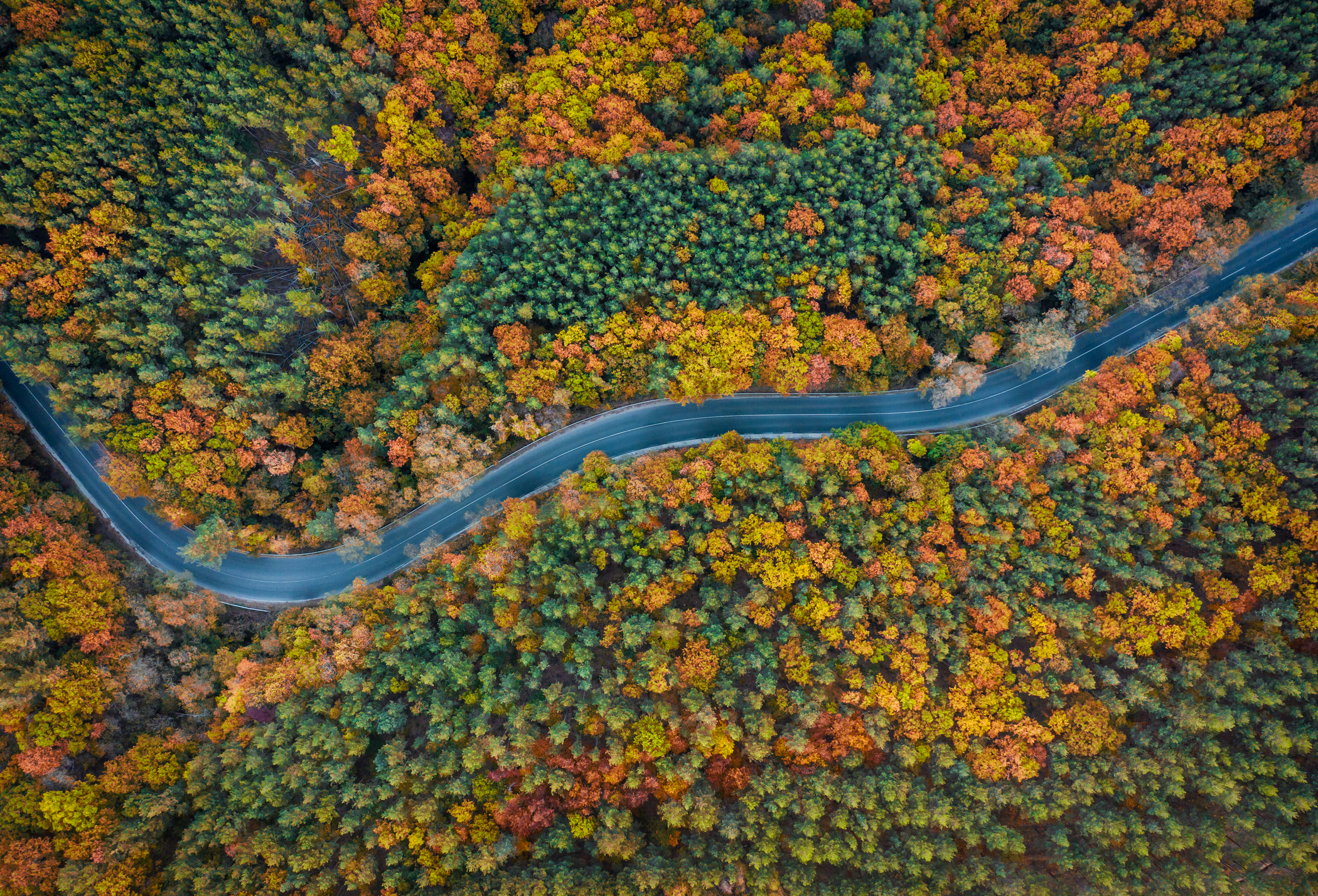 Autumn is here...take advantage of all that Westchester has to offer.